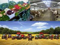 Россия стала зарабатывать на сельском хозяйстве
