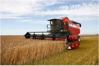 Сельхозпроизводители вырастили около 140 миллионов тонн зерновых.